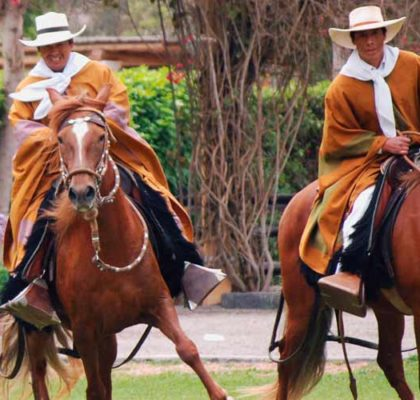 Tour Pachacamac Temple and paso horse show